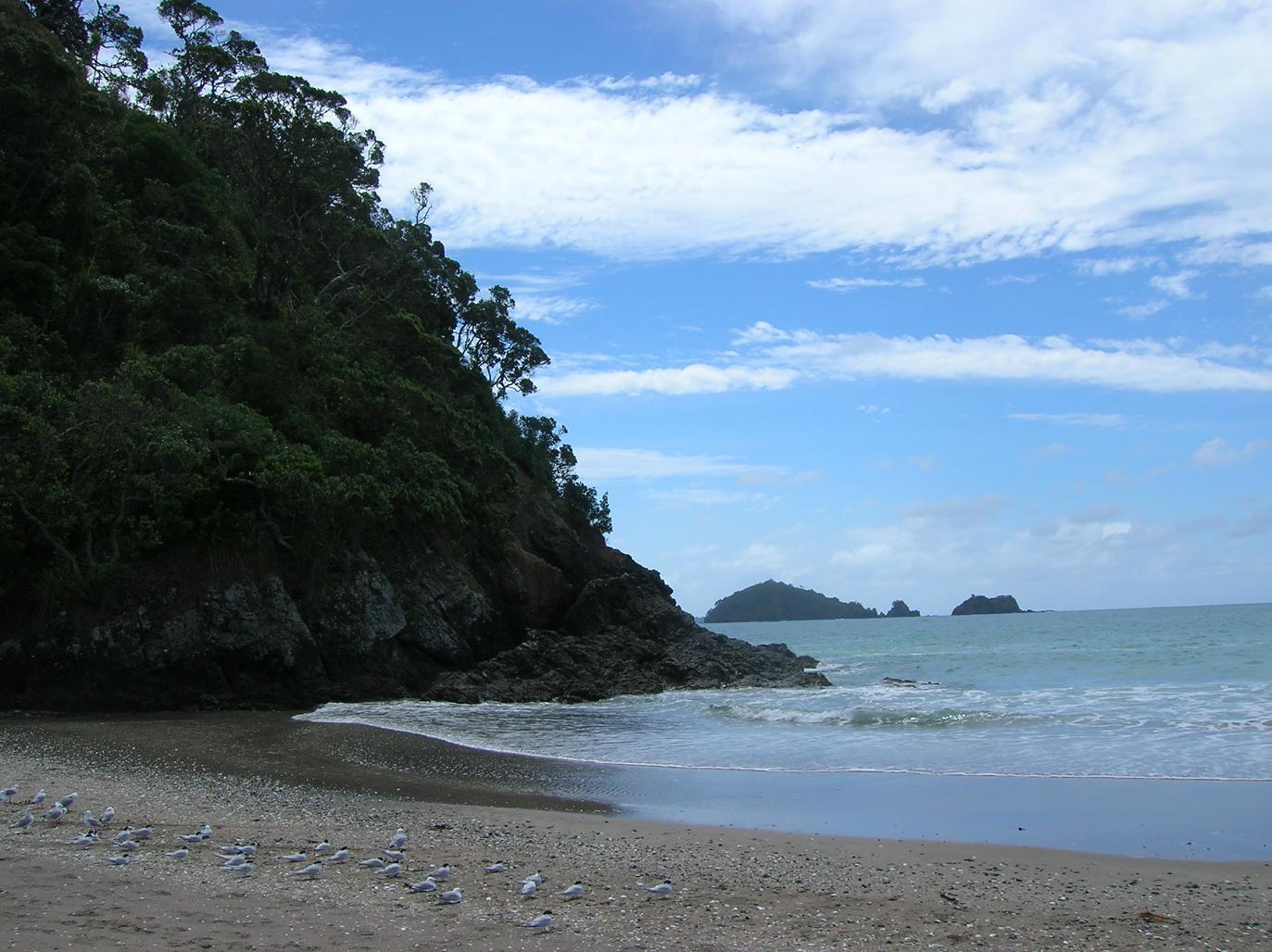 Ein Blick zum Strand …