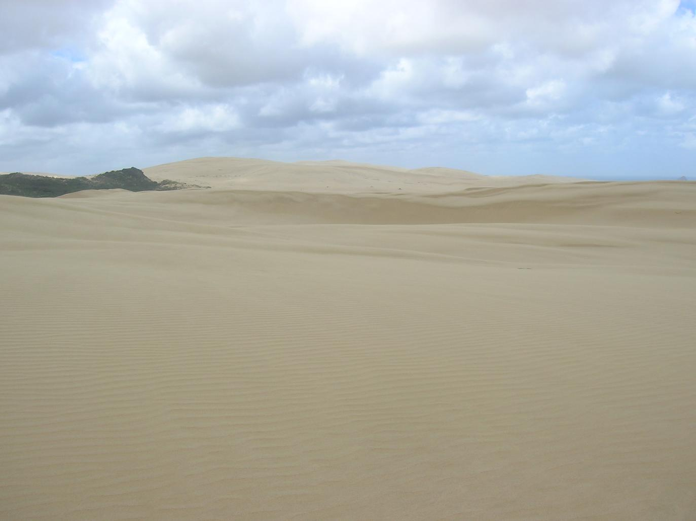 Big Sand Dunes am Ninety Mile Beach 3