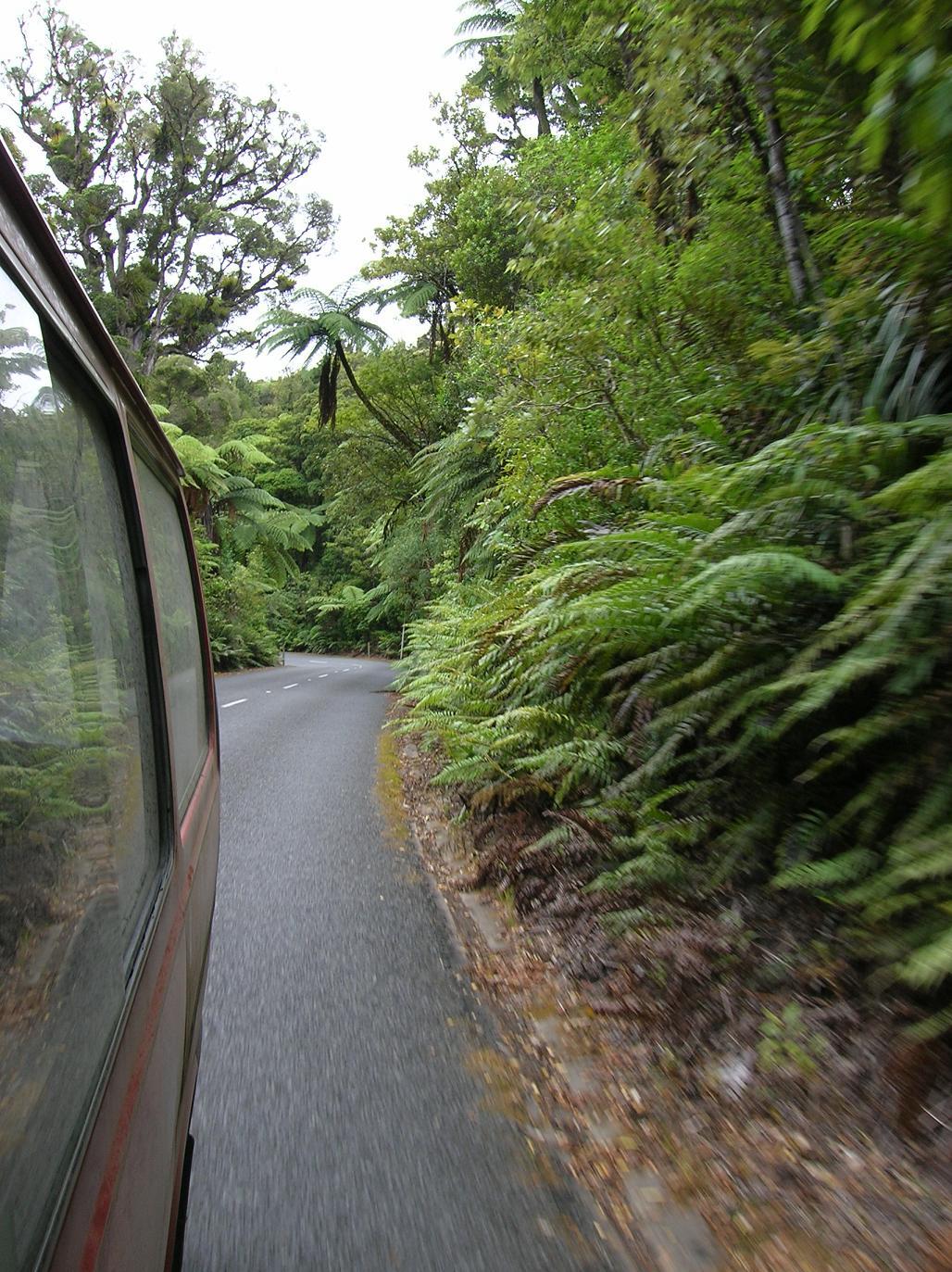 Auf dem Highway durch den Wald