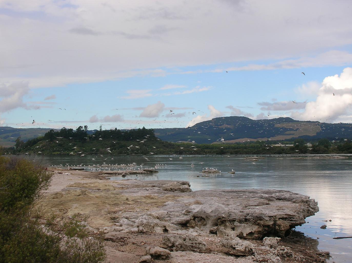 Die Gegend um Rotorua 3