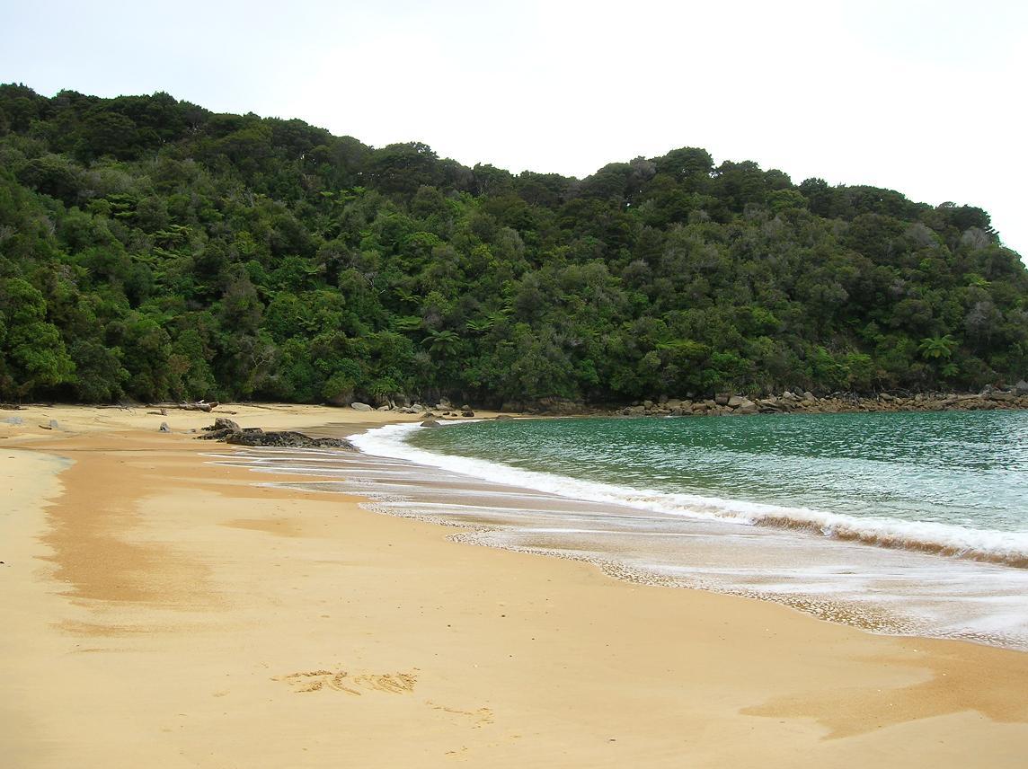 Torrent Bay
