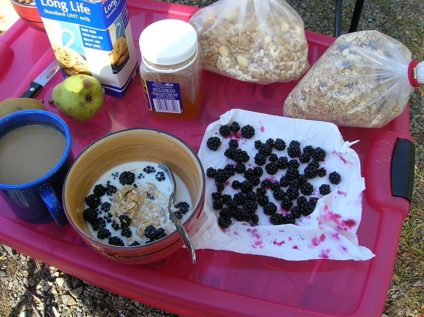 Brombeeren zum Fruehstueck