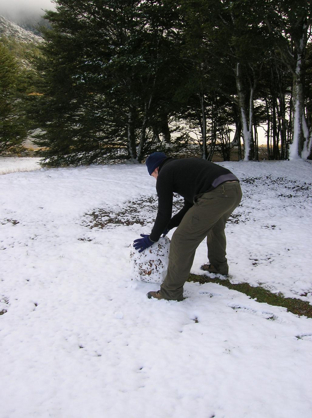 Es lebe der Schneemann