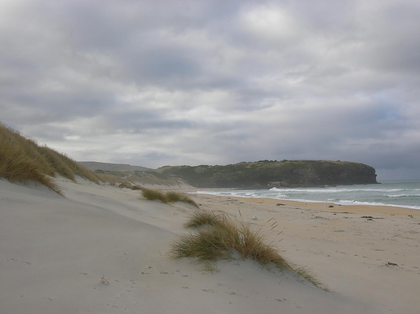 St Clair Beach die Zweite
