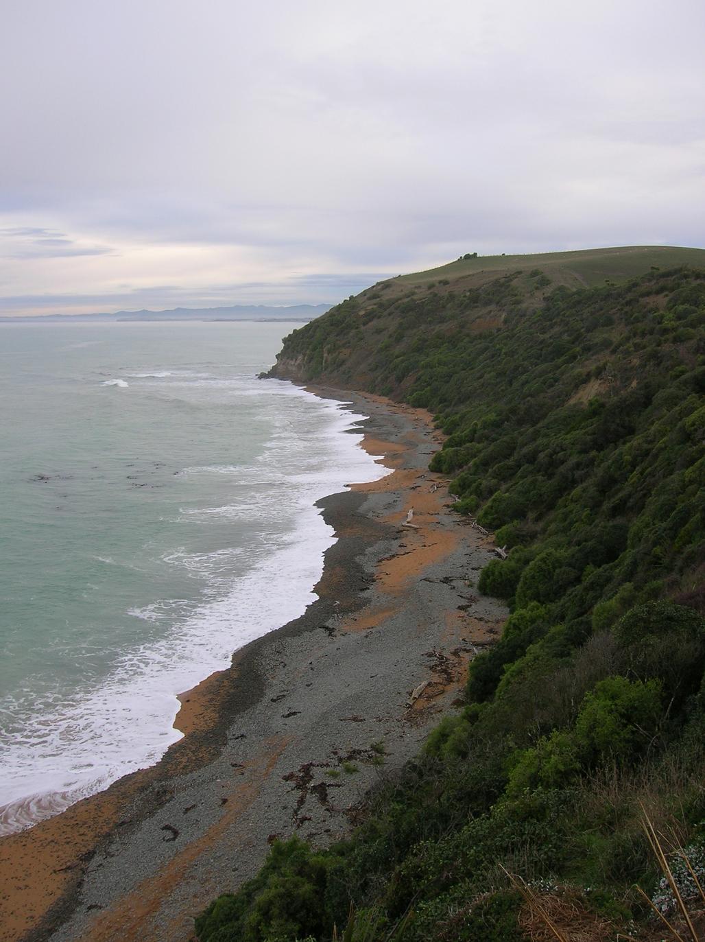 Steilküste nahe Omaru