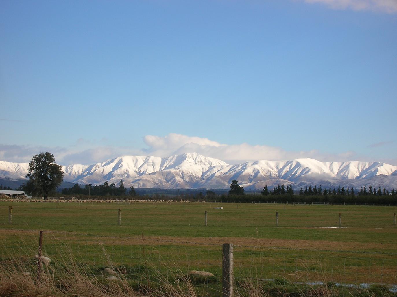 Berge und Schafe … eine Seltenheit in Neuseeland