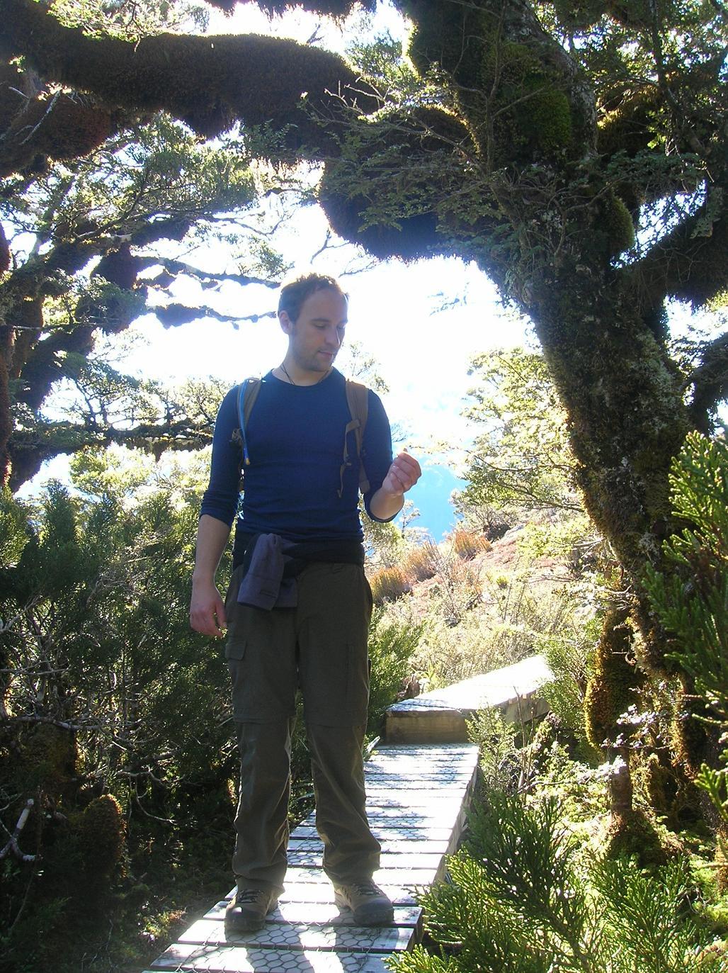 Forscher mit Holzbodenschlange