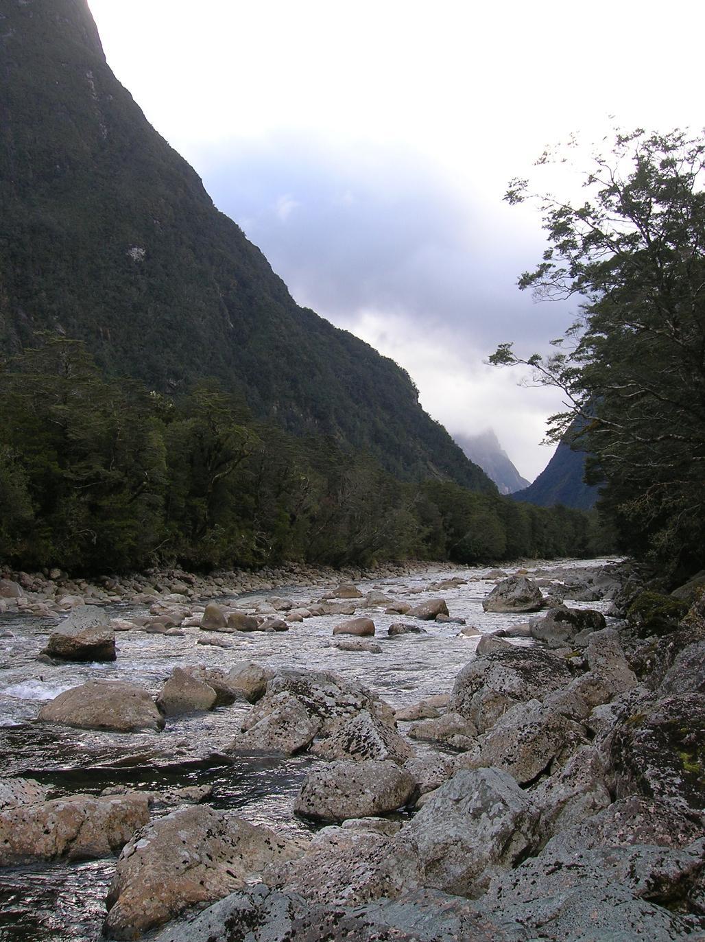 Naja … wahscheinlich Fluß Nr. 274