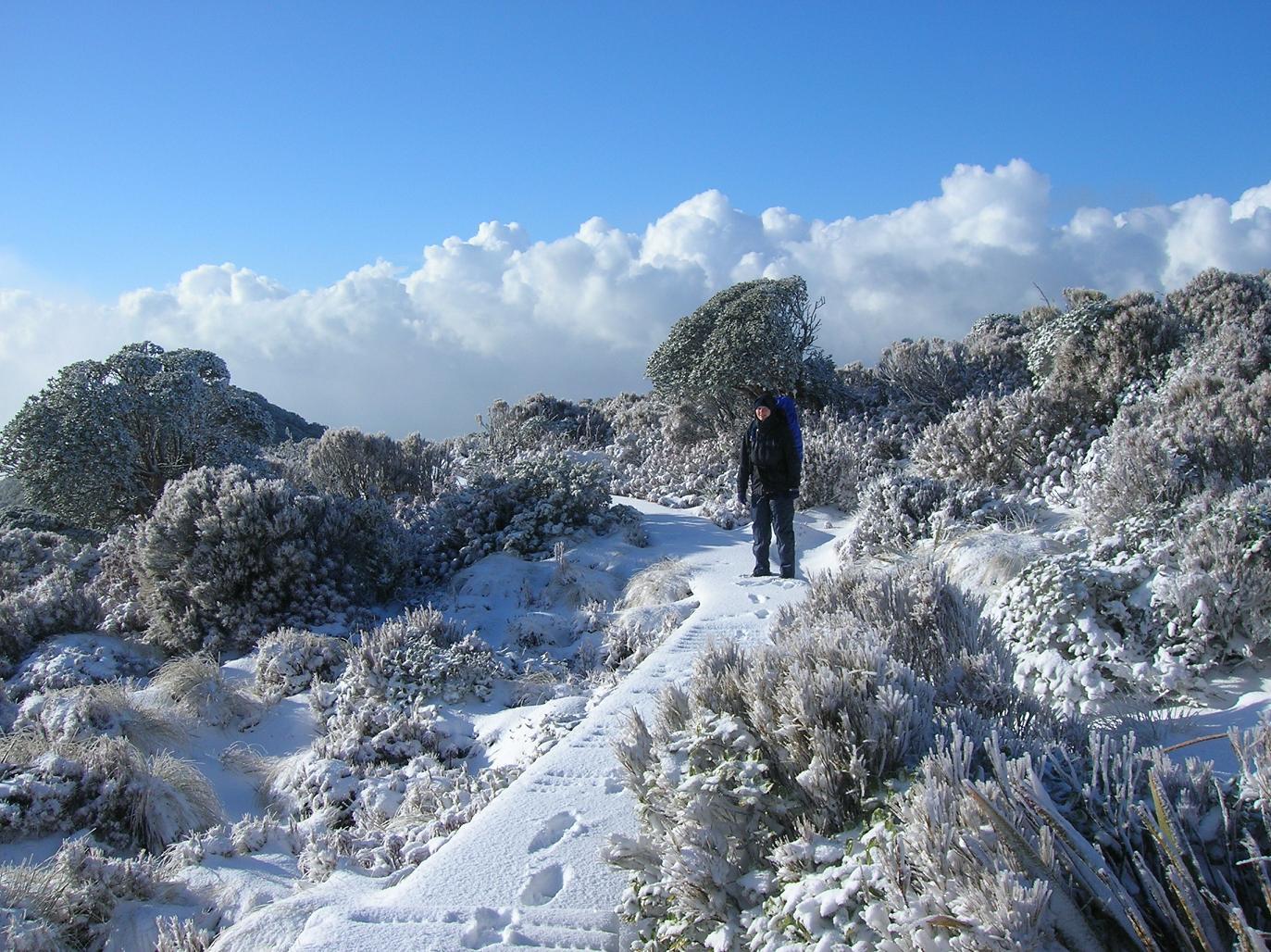 Babs, ein Schneezwerg auf Wanderschaft