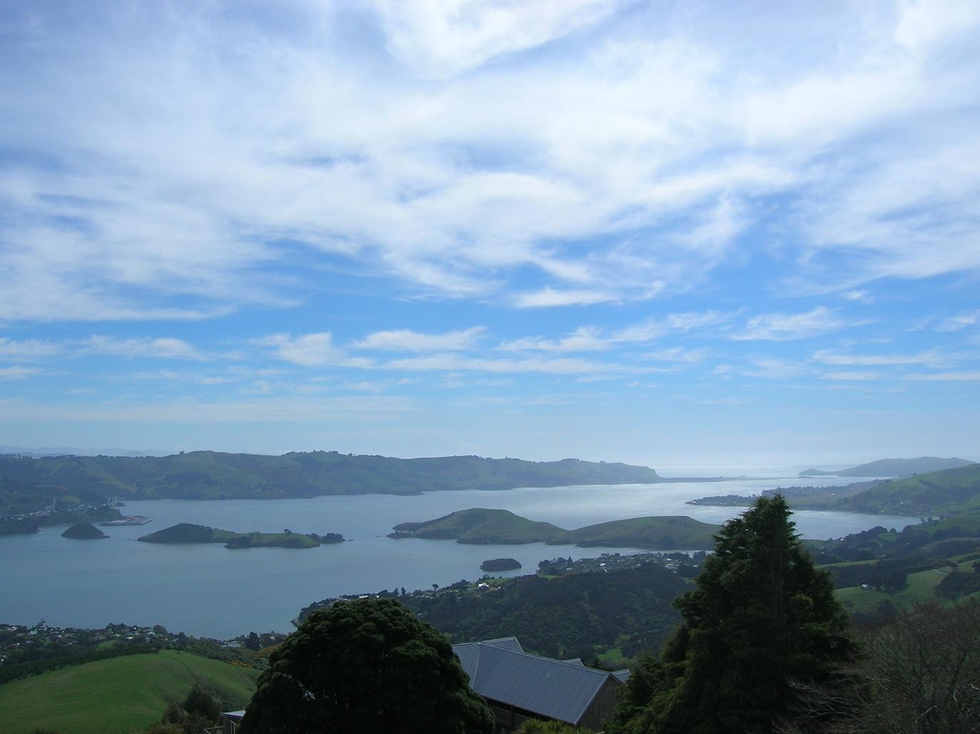 Otago Harbour und die Halbinsel
